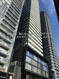 多伦多市中心 81 Wellesley Condo 公寓楼花建设进度