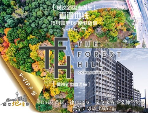 多伦多中城区酒店式公寓The Forest Hill Condo 楼花女王Daisy黄岚白金VVIP代理