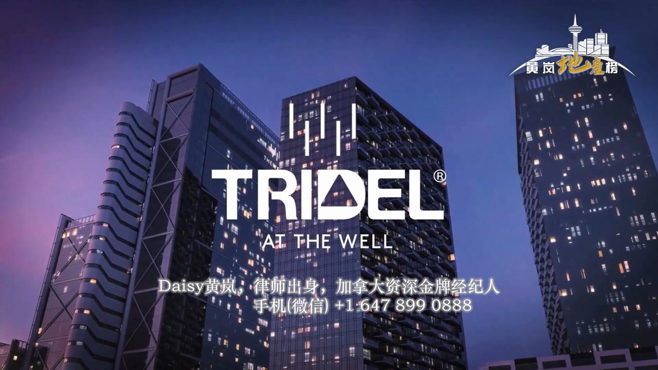 多伦多市中心The Well Condo公寓 开发商Tridel铂金一级代理 多伦多买房 多伦多楼花专家